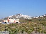 Pyrgos Santorini (Thira) - Foto 4 - Foto van De Griekse Gids
